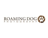 Roaming Dog Photograph