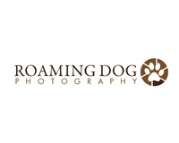 Roaming Dog Photograph